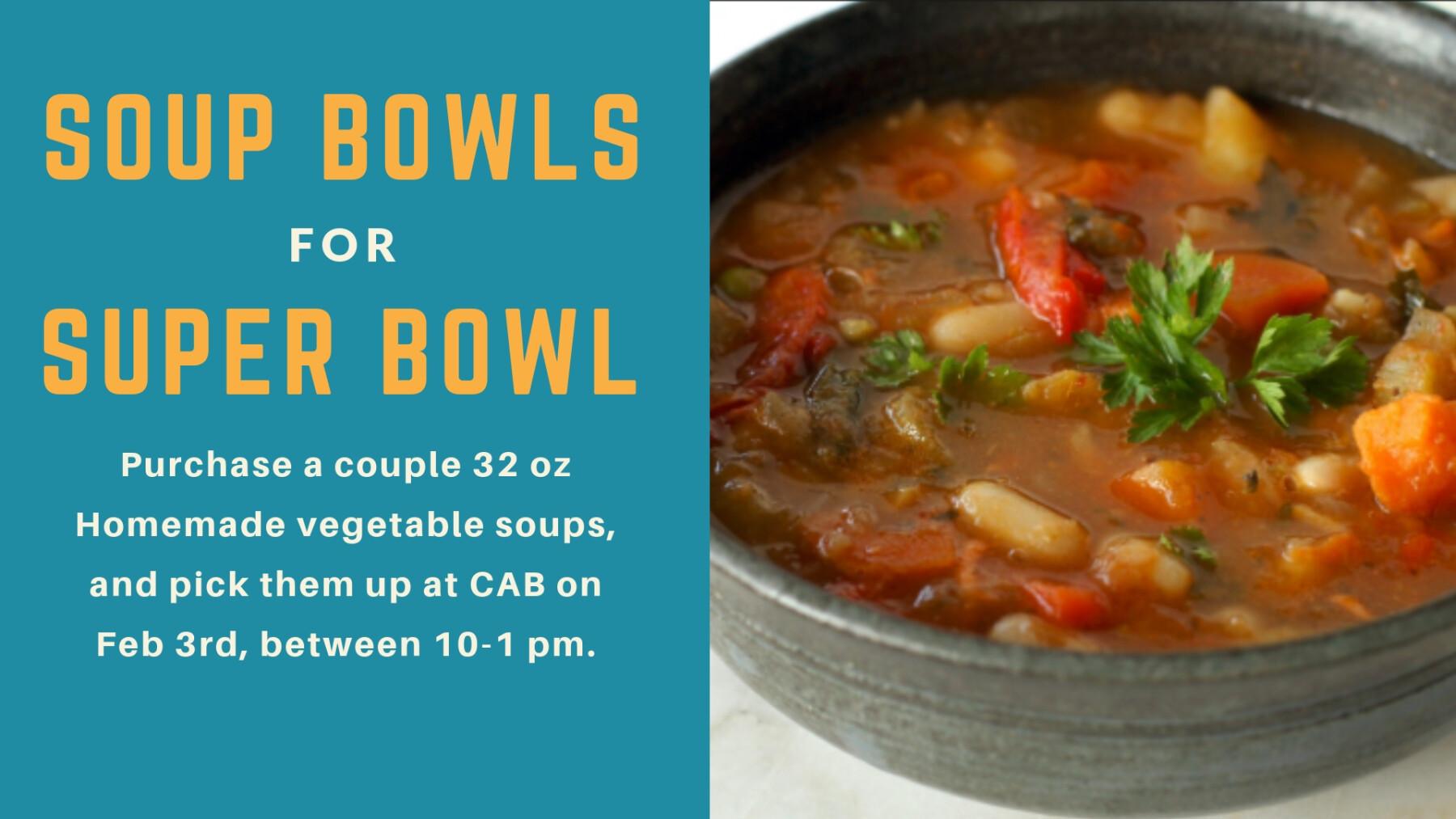 Soup Bowls for Soup Bowl
